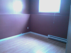 1 Bedroom Apt for $650 including heat, light and water