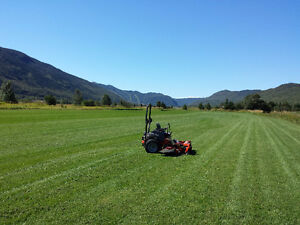 Kentucky Bluegrass Nursery Sod