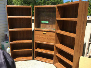 Bookshelves and China Cabinet