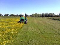 Horse paddock services topping spraying