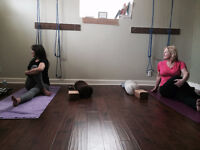 Begin or Enhance your Yoga Journey with Private Classes