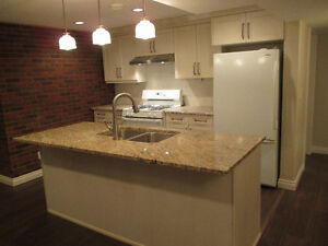 Must See Newly Reno'd 2BR Basement Suite in Parkview