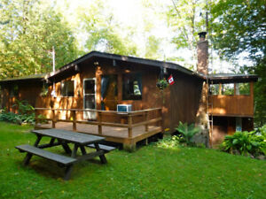 Beautiful Gull Lake Cottage For Rent! Need a Fall Vacation?