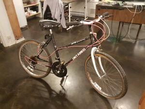 Superbe vélocross adulte 10 vitesses de marque Untamed
