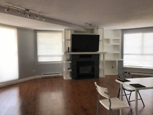 1/2 Rooms for Rent in Spacious Apartment near New West Station