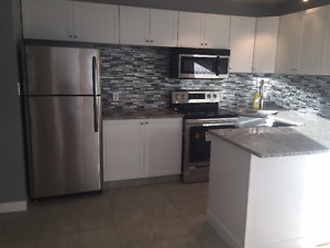 Fully Furnished One Bedroom Downtown Edmotnon