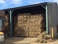 Conventional and round hay bales