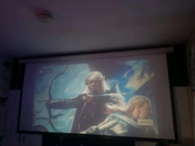 9ft screen and projector