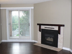 1 Bedroom Apartment with Balcony and Gas Fireplace.