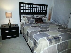 One Beautiful furnished bedroom 4 daily rental