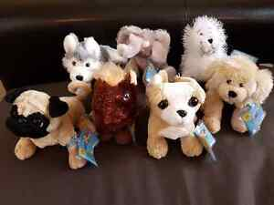 Webkinz with tags (all unactivated) $3 each London Ontario image 1