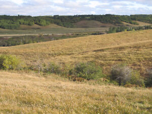 OUTSTANDING PASTURE with BEAUTIFUL VIEWS close to BRANDON