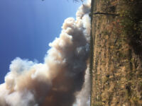 Wildfire Damage Risk Reduction