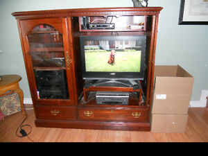 TV Entertainment Unit 100.00