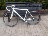 Viking Racer Bike (price negotiable)