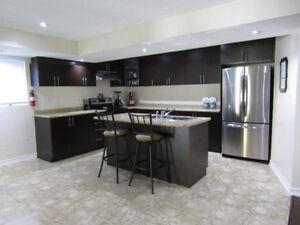 1 Bedroom Basement Apartment Ajax