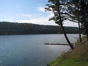 Lac La Hache waterfront at your doorstep! Williams Lake Cariboo Area image 8