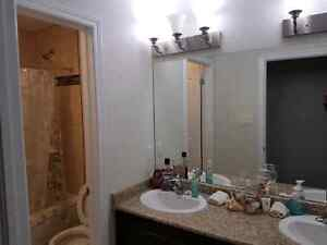 One room available for January 2017 Kitchener / Waterloo Kitchener Area image 7