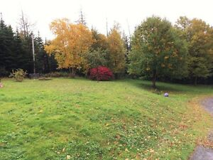 2 Bedroom Home In New Harbour - 2 Acre Lot! St. John's Newfoundland image 10