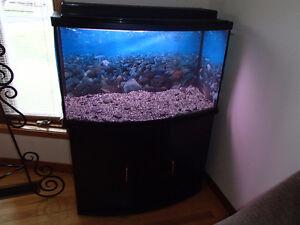 Aquarium 45 gallons Bow avec meuble et filtreur et matériel
