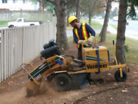Your Stump Removal Service! (647)454-6127