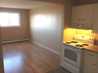 Heat/Hot Water Incl! 2bd+Office, Coin Laundry, PARKING, Dog OK