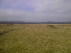 Cleared and private open land for sale or trades.
