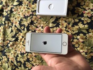 iPhone 5s gold 16 gb roger