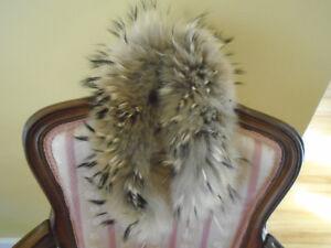 col de fourrure de loup + manteau rat musqué + pince / foulard