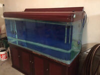 200 gallon tank and stand