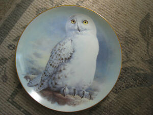 Collector Plate – The Snowy Owl by Raymond Watson