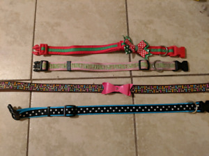 Female Dog Collars $4 each or $10 for all