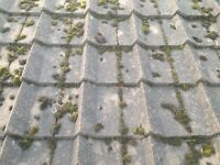 Delta roof tiles and ridge