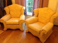 2 pale gold armchairs in excellent condition