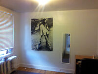 one  room in three bedroom APT for rent at Glebe from March1
