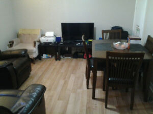 Large 2 Bedroom Basement Apartment for Rent in Scarborough