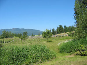 Large, bright 1 bedroom basement suite on farm (near Salmon Arm)