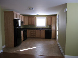 Immaculate, Open Concept, 1 Bdrm Apt - Kenmount Terrace St. John's Newfoundland image 4