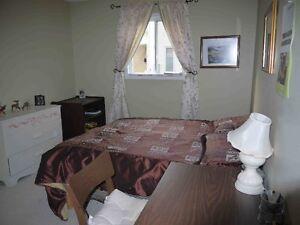 UWO:5 bedrm+3 full bath$420/Room all inclusive Wonderland/Sarnia