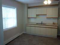 Beautiful, 1 BDRM Apt on Main Floor (All Included)