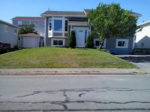 Two bedroom apt. for rent JAN 1st St. John's Newfoundland image 1