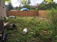 Yard Work - Tree Trimming - Pressure Washing - Best Price