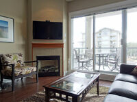 Furnished oceanview apartment in Parksville