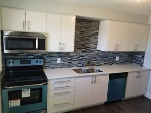 Newly Renovated 2 BR! Stainless steel, Dishwasher and A/C!