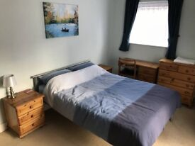 City apartment flat share with one professional. Nice double room available Mon to Fri at low cost.