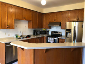 Entire Kitchen  cabinet and countertop for sale