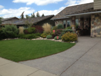 Landscaping/Lawn Care/Snow Removal