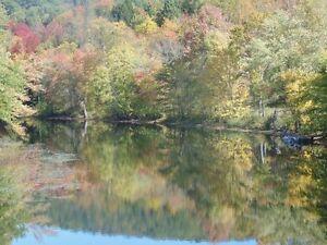 Magnifiques terrains aux abords de la Rivière Petite-Nation. Gatineau Ottawa / Gatineau Area image 4