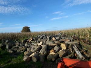Season dried hardwood firewood