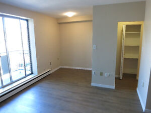 Bachelor/Studio in Corktown - perfect for graduate students